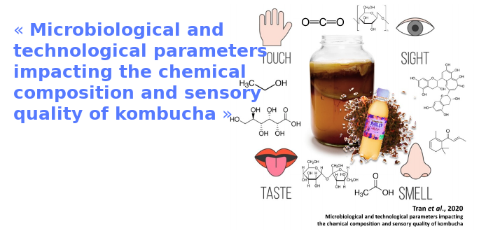 « Microbiological and technological parameters impacting the chemical composition and sensory quality of kombucha